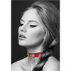 Bijoux Pour Toi  Accesorio Collar  Bdsm Rojo