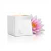 Jimmyjane - Afterglow Massage Candle Pink Lotus