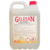 Gel de Manos Hidroalcohólico Gelesán (5 litros)
